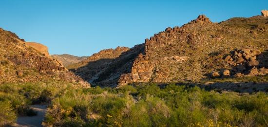 Grapevine Canyon, Nevada