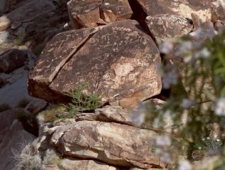 Grapevine Canyon – A SoundscapeTour